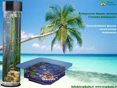 Аквариум,  аквариумы колоны,  башни - main