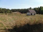 Перспективный участок в Негоничах 4, 3 Га (89 км от Минска) - foto 1