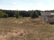 Перспективный участок в Негоничах 4, 3 Га (89 км от Минска) - foto 3