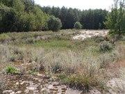 Перспективный участок в Негоничах 4, 3 Га (89 км от Минска) - foto 7