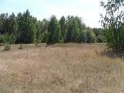 Перспективный участок в Негоничах 4, 3 Га (89 км от Минска) - foto 11