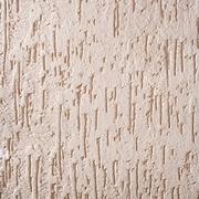 Штукатурное покрытие короед Байтера - foto 1