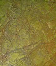 Декоративная штукатурка рельефная. Италия - foto 17
