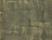 Декоративная штукатурка рельефная эффект коры. Италия - foto 8