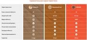 Виниловый паркет «Vinilam» - 100% защита от влаги - foto 3