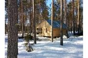 Зимница – строим сруб дома и бани из бревен под ключ - foto 0