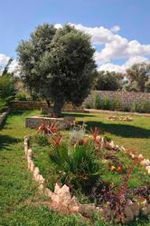Villa Lucia Sfakaki - foto 5