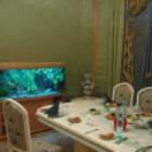 Организация и проведение аквариумных выставок.Зоомагазин под ключ. - foto 2