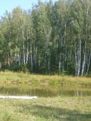 Дом 125 кв.м. в лесу п.Рогово Варшавское,  Калужское ш г.Москва  - foto 2
